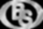 БС_лого 3.png