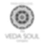 veda soul (1).png