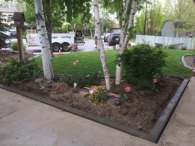Concrete Curbing