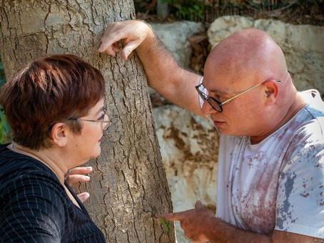 כיצד תשכנעו את בני זוגכם להגיע לייעוץ זוגי?