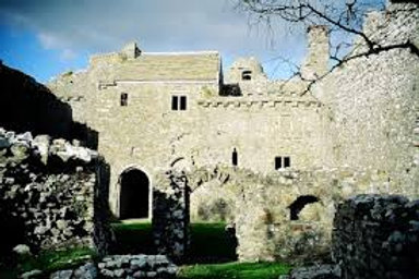Gower Castle Tour