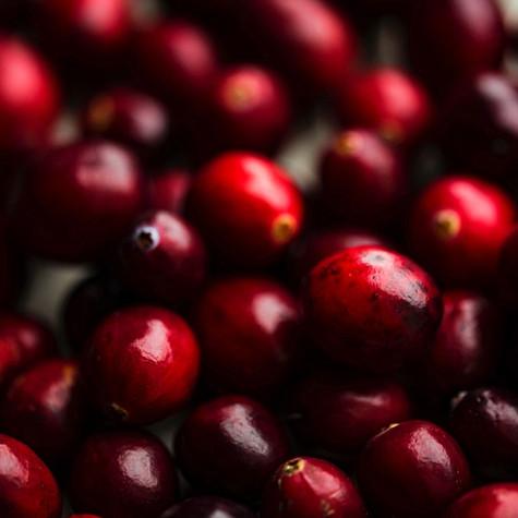 Cranberry Macadamia with White Chocolate