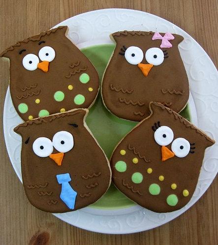 Owl cookies Los Angeles, bird cookies, cute owl cookies