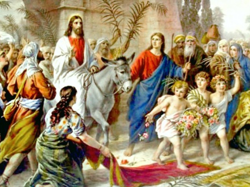 The Palm Sunday Steward