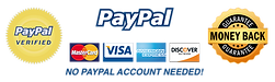 paypal-trust-seal-final_700x.png