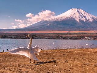 Subida ao Monte Fuji: uma experiência inesquecível
