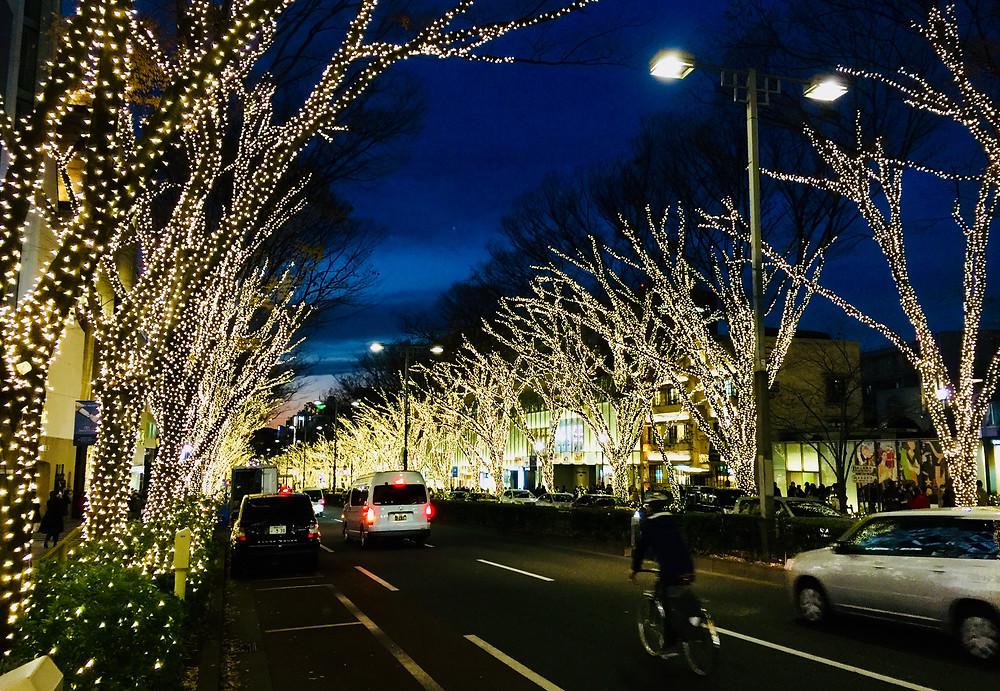 A Avenida Omotesando é toda iluminada no fim-do-ano.