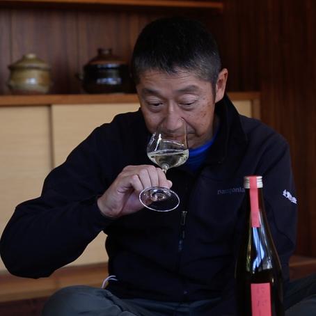 """""""3x Saquê"""": o universo da mais tradicional bebida japonesa"""
