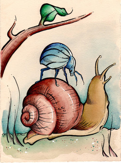 It Rode on the Back of a Snail