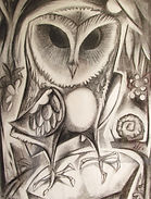 OWL & SNAIL Charcoal drawing