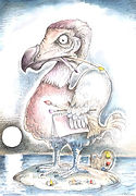 DODO ARTIST Ink & watercolour
