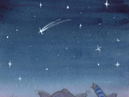 La nuit des étoiles filantes - The Night of the Shooting Stars