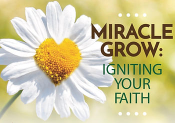 MiracleGrow.jpg