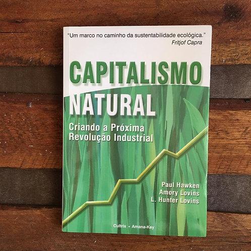 Capitalismo Natural: Criando a próxima Revolução Industrial-Paul Hawken e outros