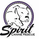 spirit canine.jpg