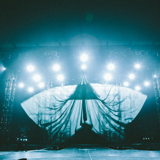 The opening Sniffer/kabuki curtain