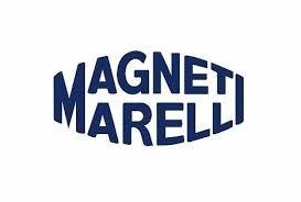 Magnet Mareli