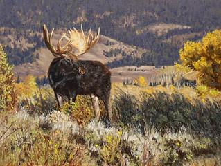 John Urban Captures the Wild World in Paint