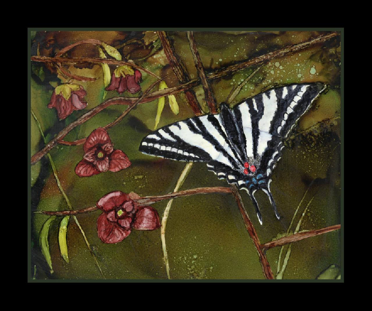 Butterfly, zebra swallowtail