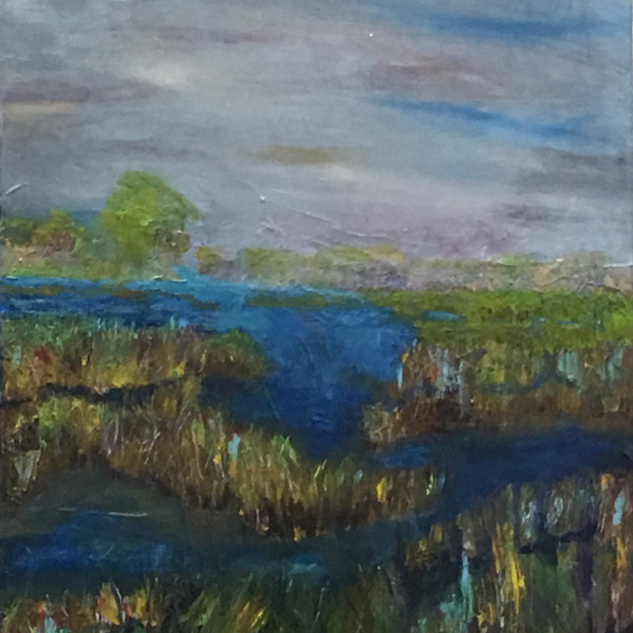 Wetlands by Diana Gilham