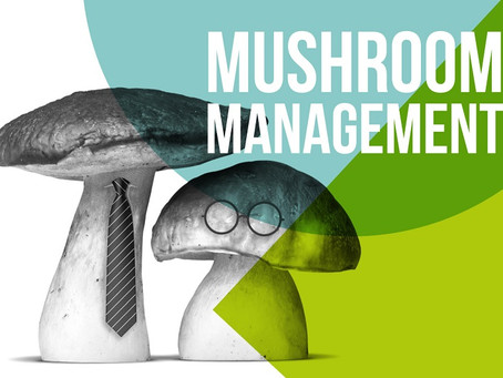 Mushroom Management - A Dangerous By-Product of COVID?