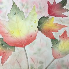 Fall Leaves1 - Copy.JPG