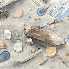beach treasures original file Small 72 R