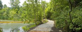 Lewis Stout Memorial Trail
