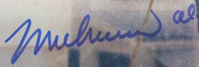 Ali forgery 1 (6).jpg