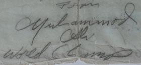 Signature 60's (4).JPG
