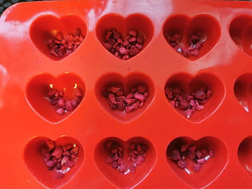 raspberry pieces in chocolate mould