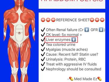 무증상 간수치 상승, 최근 무리한 운동에 의한 근육 기원으로 확인, 경미한 횡문근융해증