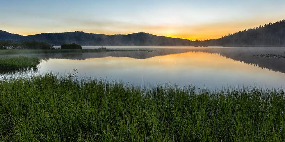 Fishout: Webber Lake