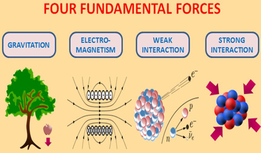 fourfundamentalforces