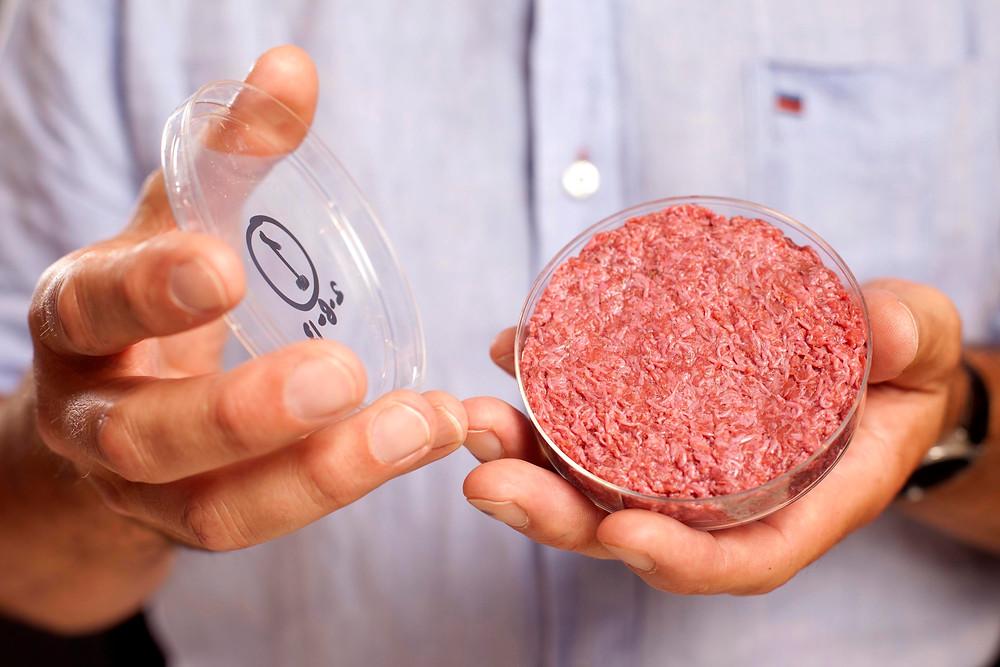 stem cell burger.jpg