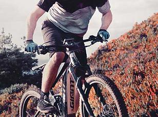 Giant E-Bikes.PNG