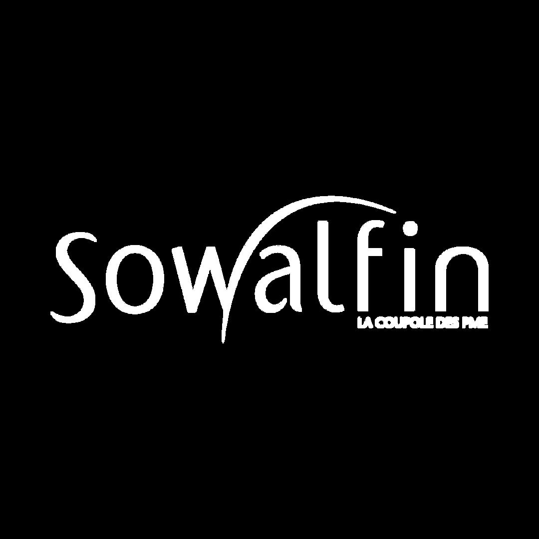 SOWALFIN_Plan de travail 1.png