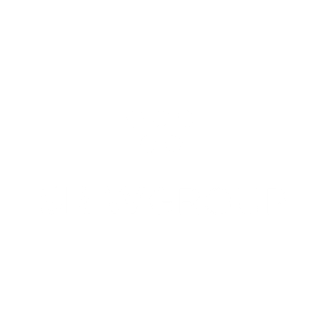 SRIW_Plan de travail 1.png