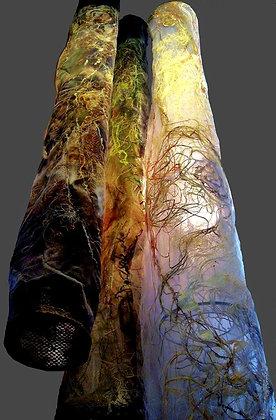 Laurentian Forest