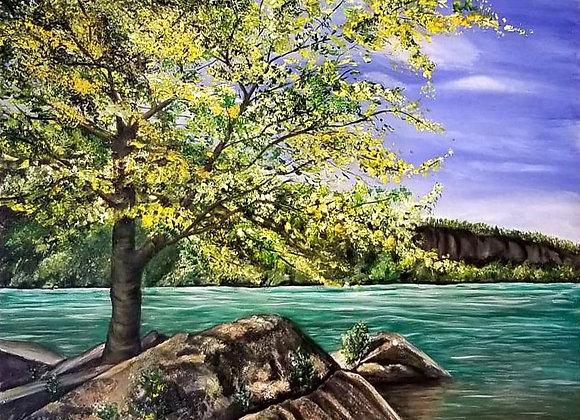 Beautiful Niagara Glen
