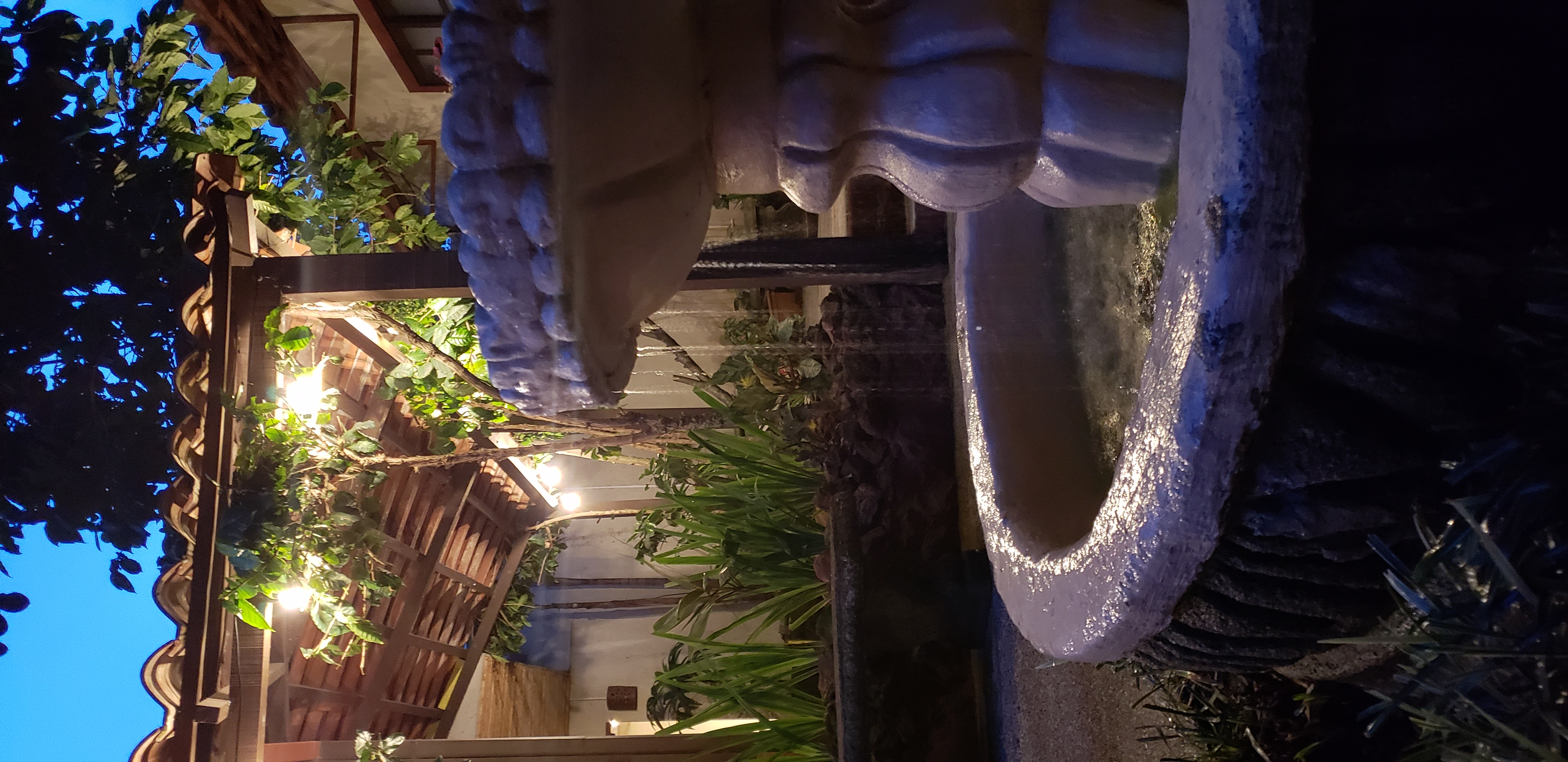 Courtyard Fountain at Night