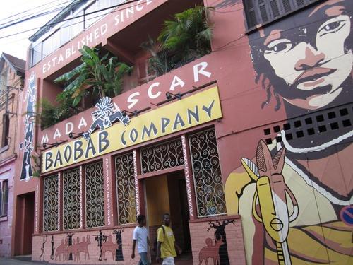 baobab-company (1)