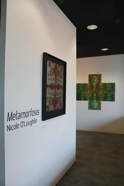 01_Metamorfosis