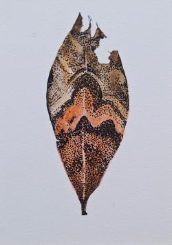 Cabinet_Nicole_.Maatsuyker Island Leaf IVjpg