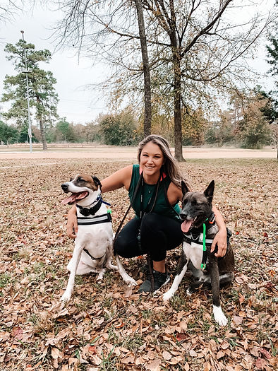 Wise Tails Academy Dog Training Best Dog Trainer in Texas