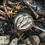 Koken in Nature
