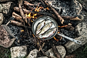 Matlagning i Nature