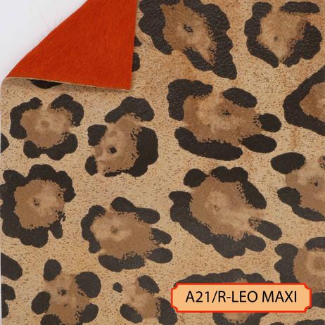 A21/R-LEO MAXI