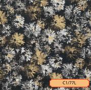 C1/77L