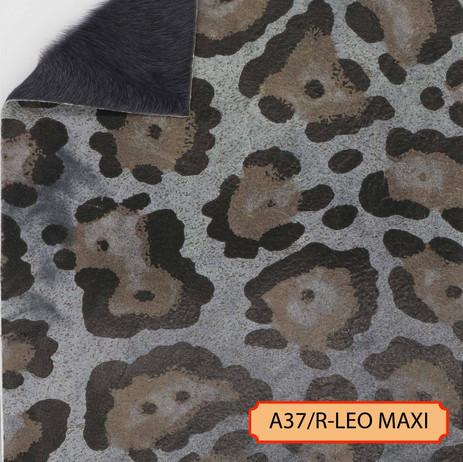 A37/R-LEO MAXI